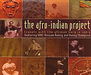 Afro Indian Project